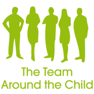 the team around the child