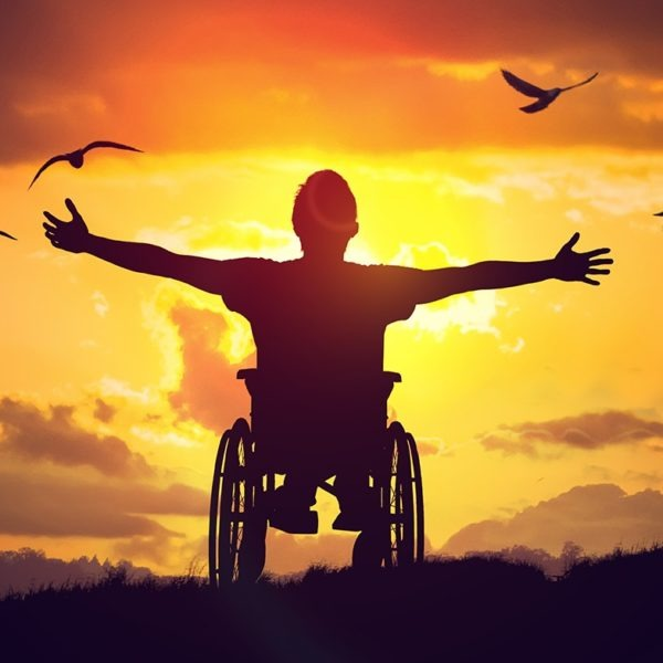 person in wheelchair stairs at the sky, arms wide in triumph as he watches birds soar